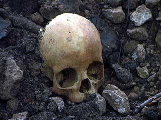В Парке имени Дурова вновь обнаружены человеческие останки