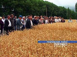 В Павловском районе состоялся областной семинар полеводов