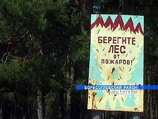 В Петровском лесничестве некому предотвращать пожары