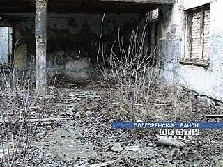 В Подгоренском Доме культуры растут тополя