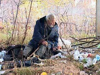 В поселке Сомово на свалке поселился человек