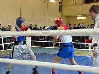 В рамках областной Универсиады прошли соревнования по боксу