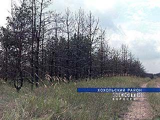 В районах области объявлен высокий класс пожарной опасности