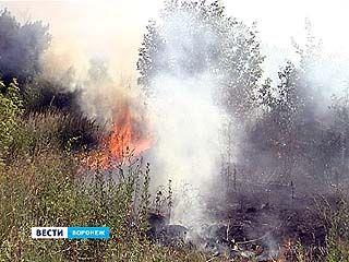В районе улицы Ильюшина вспыхнули несколько гектаров сухой травы и строительного мусора