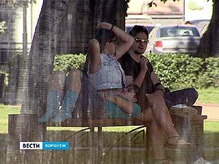 В регионе установилась рекордная жара - среднесуточная температура выше нормы на 7 градусов