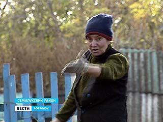 В Семилукском районе двух пенсионерок осудили за кражу