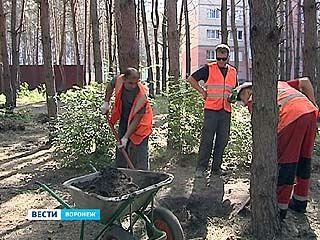 В Северном ликвидировали несанкционированное кладбище бездомных собак