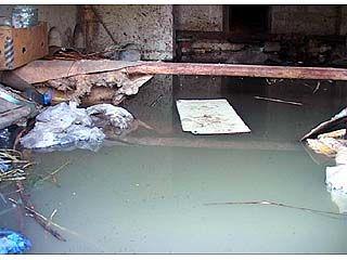 В Шилово несколько семей живут фактически на болоте
