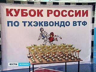 В столице Черноземья прошел Кубок России по тхэквондо