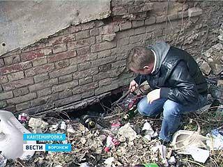 В центре Кантемировки под землей нашли целую сеть ходов