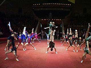 В цирке прошли показательные выступления воронежских акробатов