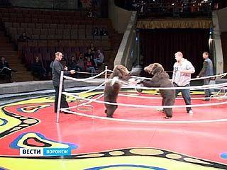 В Воронеж с премьерой приехал знаменитый цирк Филатовых