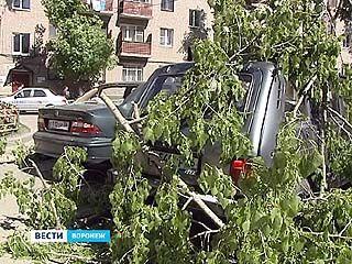 В Воронеже ликвидируют последствия урагана