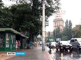В Воронеже молодой девушке плеснули в лицо химической жидкостью