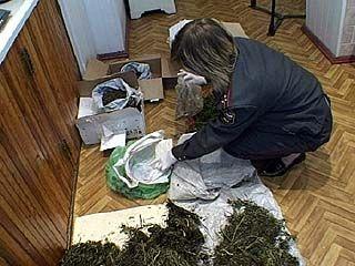 В Воронеже перекрыт канал межгосударственного транзита наркотиков