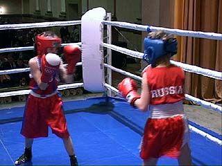 В Воронеже появился новый боксерский турнир