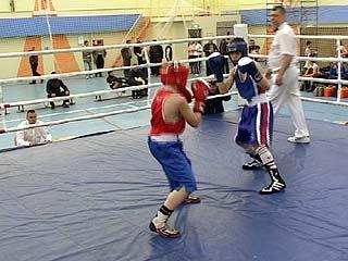 В Воронеже проходит первенство Центрального федерального округа по боксу