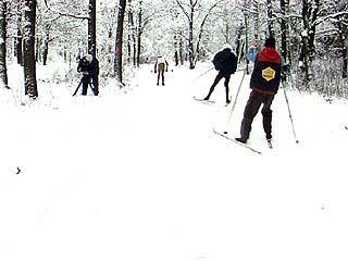В Воронеже прошел чемпионат области по лыжным гонкам