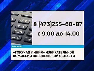 """В Воронеже работает """"горячая линия"""" по вопросам нарушения избирательного законодательства"""