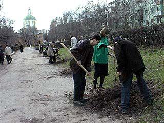 В Воронеже стало одним парком больше