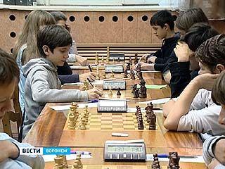 В Воронеже стартовал этап Кубка России по шахматам среди детей от 8 до 14 лет