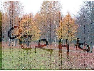 В Воронеже установлен новый температурный рекорд