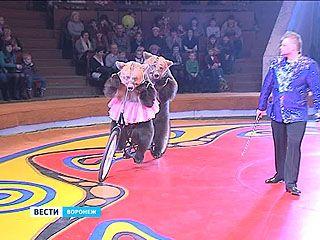 В Воронеже вновь гастролирует знаменитая династия цирковых артистов Филатовых