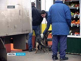 В Воронеже впервые завели уголовное дело против догхантера