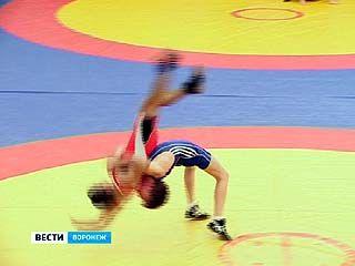 В Воронеже завершился чемпионат области по греко-римской борьбе