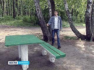 В воронежских лесах отдых теперь только в специально оборудованных местах