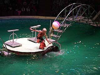 В воронежском цирке состоится премьера