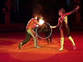 В воронежском цирке состоялась премьера представления