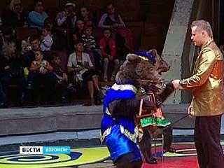 В Воронежском цирке состоялась премьера программы династии Филатовых