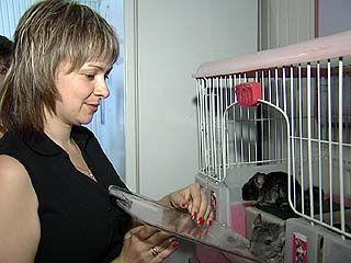 В Воронежском зоосаде прошла спасательная ветеринарная операция