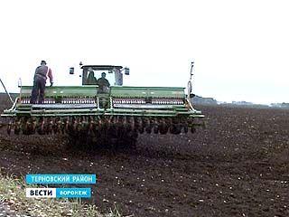 В Воронежской области будет введён режим чрезвычайной ситуации по сельскому хозяйству