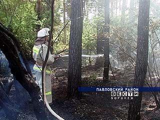 В Воронежской области объявлена чрезвычайная пожарная обстановка