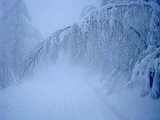 В Воронежской области объявлено штормовое предупреждение