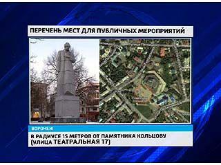 В Воронежской области определили места, где можно проводить митинги
