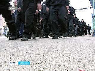 В Воронежской области под амнистию попали 144 человека
