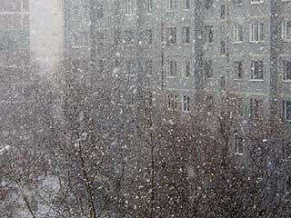 В Воронежской области погода не изменится до конца недели