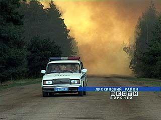 В Воронежской области практически непрерывно горят леса