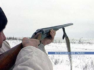 В Воронежской области разыскивают браконьеров