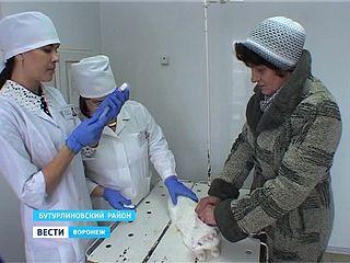 В Воронежской области стартовала вакцинация против бешенства
