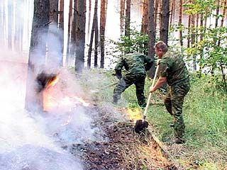 В Воронежской области введён режим чрезвычайной ситуации