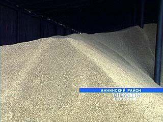 В закромах страны - продовольственная пшеница, а кормового зерна не хватает