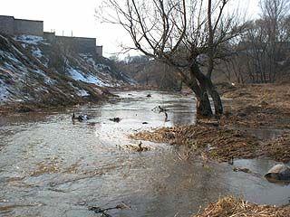 В зону возможного затопления в Воронеже попадают около 400 домов