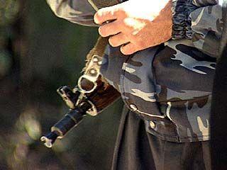 Волгоградские воры не скрылись от воронежских милиционеров