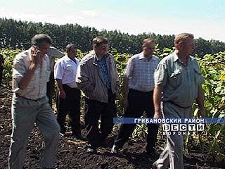 Вопросам растениеводства посвятили семинар