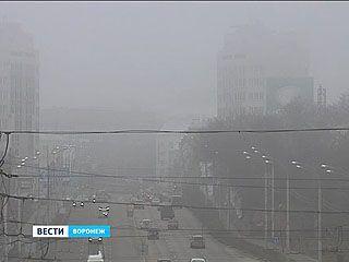 Воронеж снова окутал густой туман