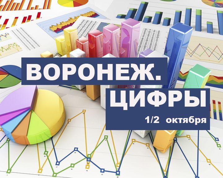 Воронеж. Цифры